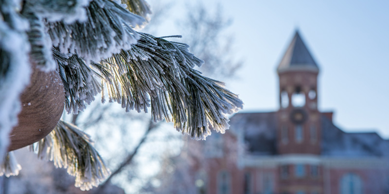 Frost covered campus